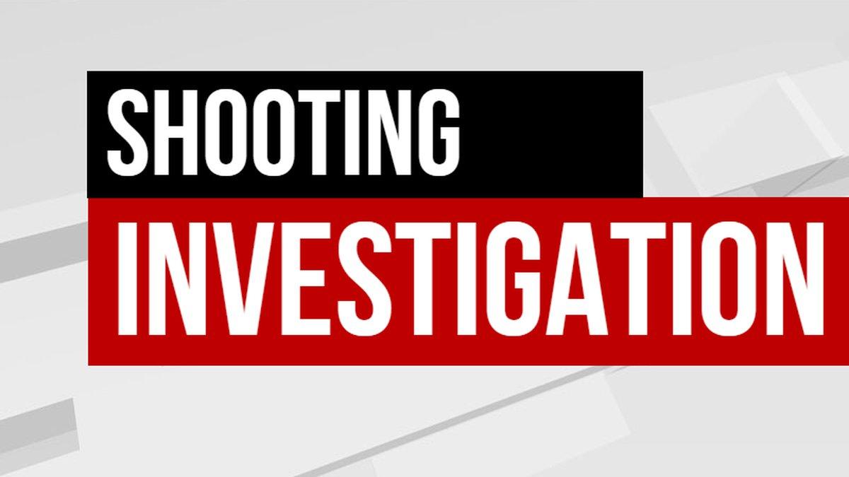 Cameron Hamilton was shot near the intersection of Leman and Clark Street on Sunday
