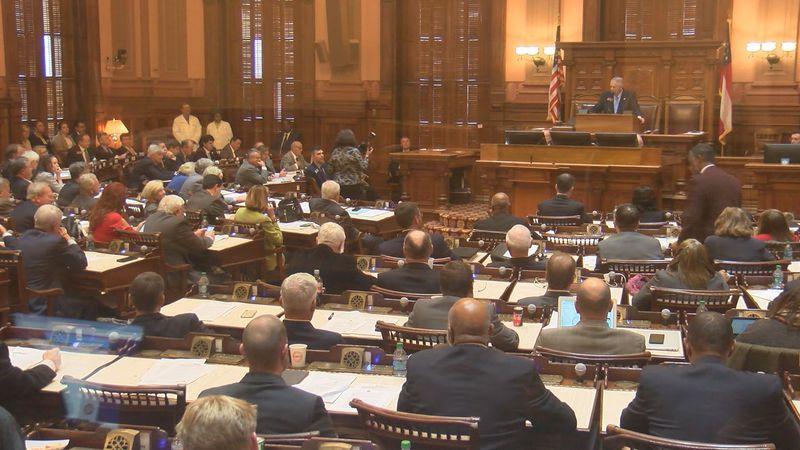 Georgia House of Representatives in session (Source: WALB)