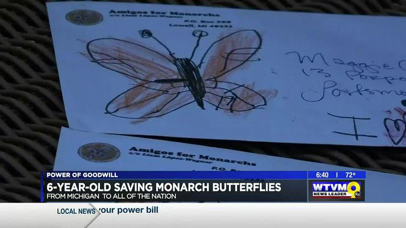 Power of Goodwill: 6-year-old saving monarch butterflies