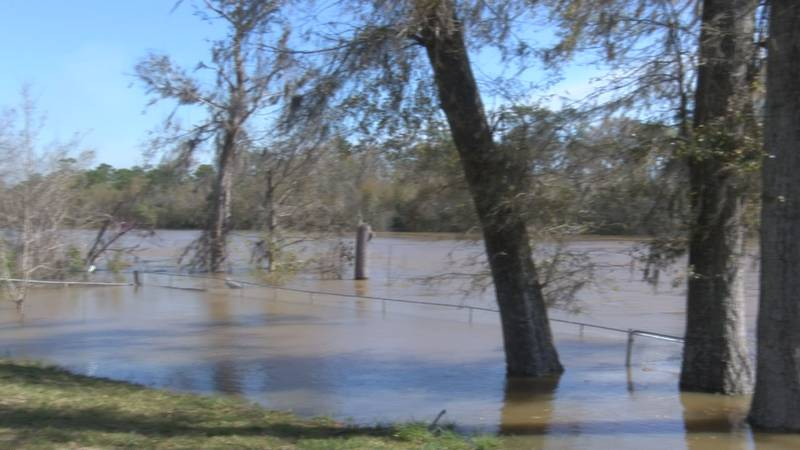 Flint River Forecast to Recede Greatly Over Next Few Days, Bainbridge