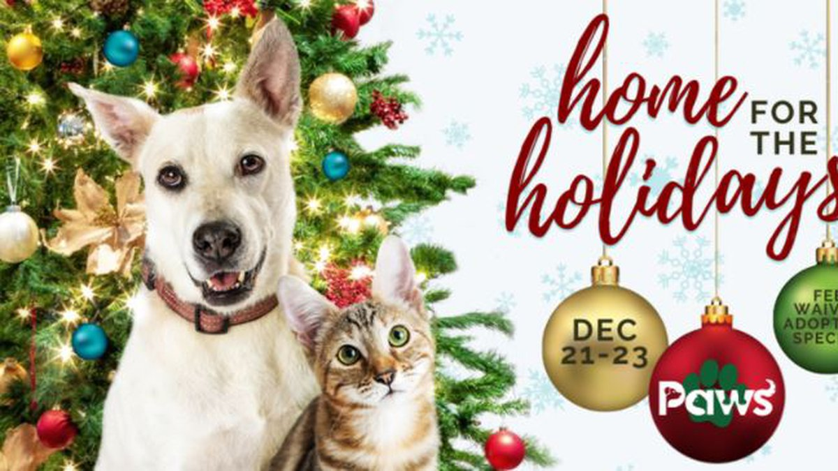 Paws Humane is hosting a fee-waived adoption special December 21st-23rd to find all of our...