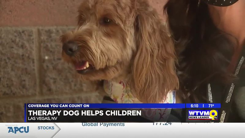 Feel Good Friday: Las Vegas class gets new therapy dog