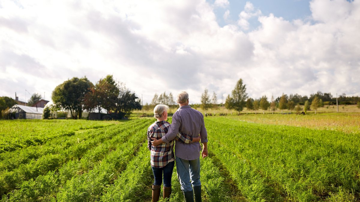 farming, gardening, agriculture and people concept - happy senior couple at summer farm