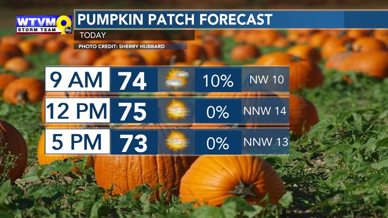 All of the Fall Feels Making for GREAT Pumpkin Patch Weather!