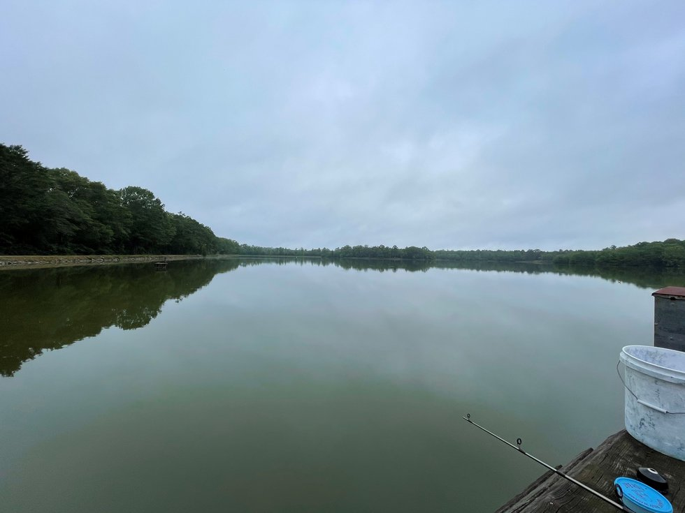 Spanning 100 acres, the Dallas County Public Fishing Lake provides an assortment of aquatic...