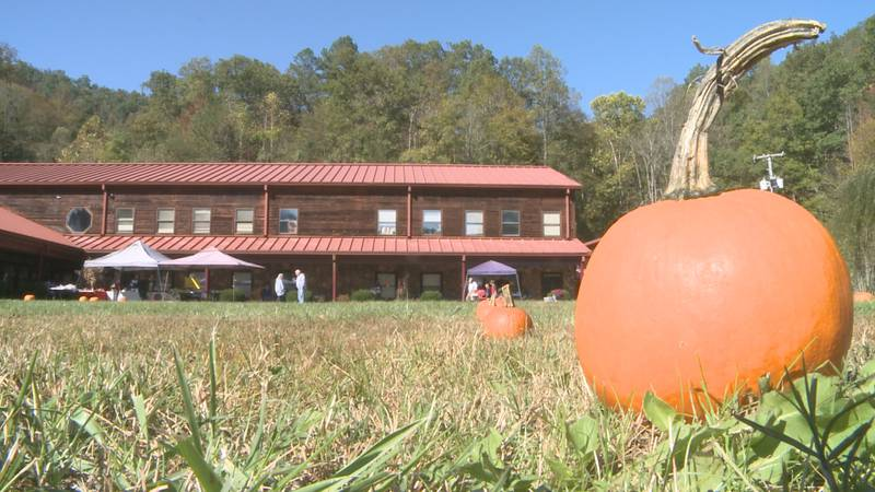 The David School hosted its first-ever Falcon Fall Festival and school officials say it was a...