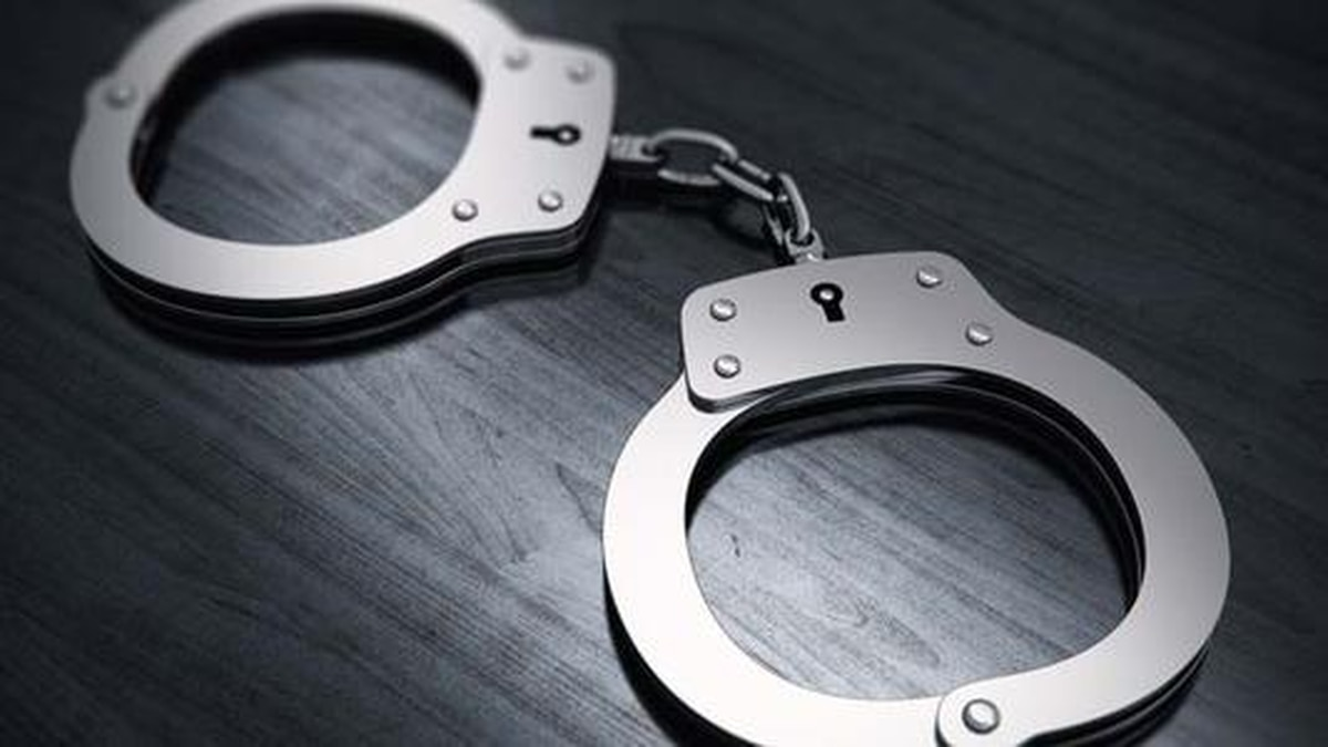 The LaGrange Police Department arrested a burglary and theft suspect.