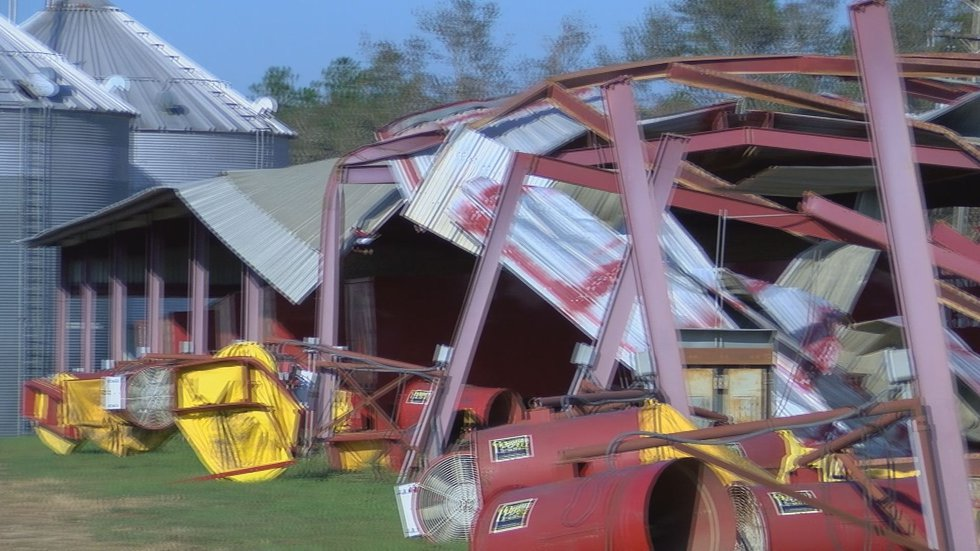 Wagon covering destroyed because of Michael's winds (Source: WALB)